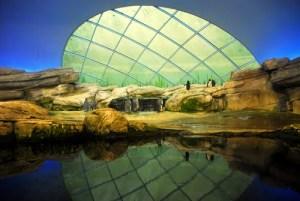 Berlīnes Zoo