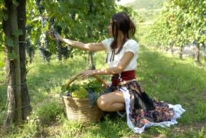 meitene un vīnogas